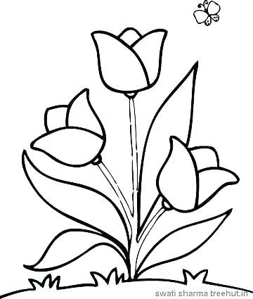 360x425 Free Printable Flowers Coloring Pages Kjnoonscom Free Printable