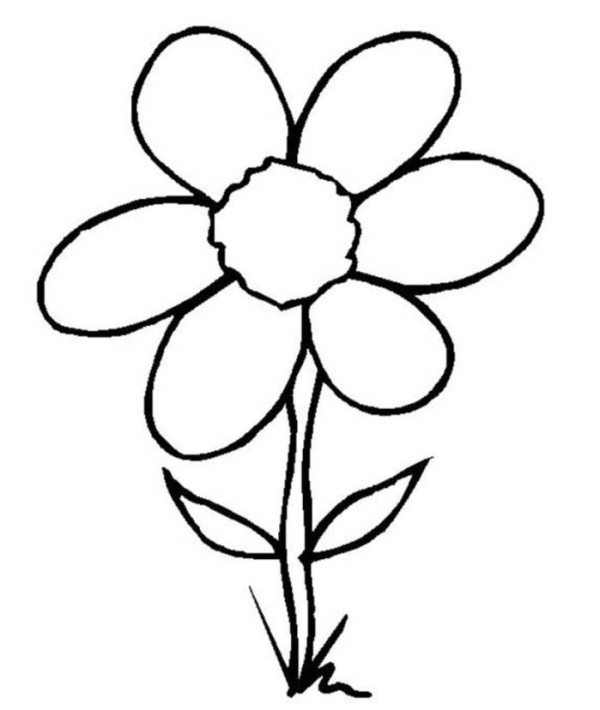 600x710 Simple Flower Coloring Pages