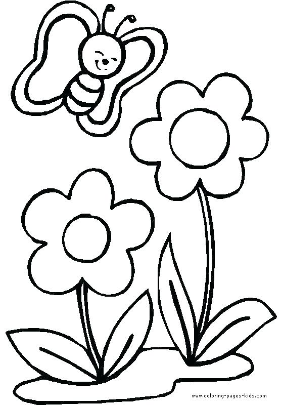 556x800 Simple Flower Coloring Pages Simple Rose Coloring Pages Simple