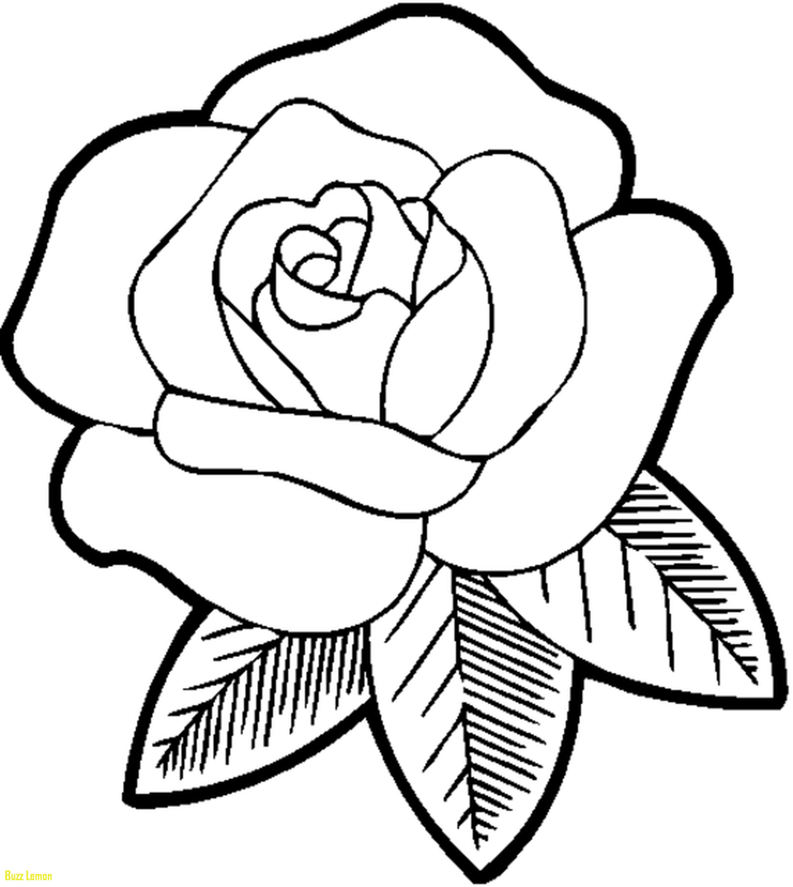 2550x2849 Easy Coloring Best Of Easy Flower Coloring Pictures Coloring Page