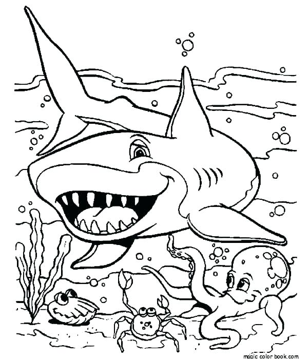 600x699 Whale Shark Coloring Page Shark Color Pages Shark Color Pages Pin