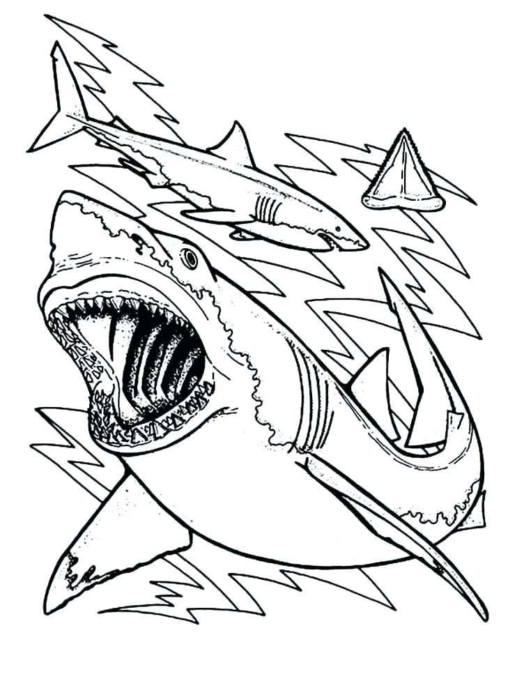 752x1000 Whale Shark Coloring Pages Shark Coloring Pages Shark Coloring