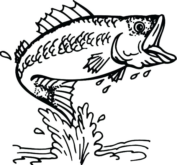 600x561 Fishing Coloring Pages Fishing Target Bass Fish Coloring Pages