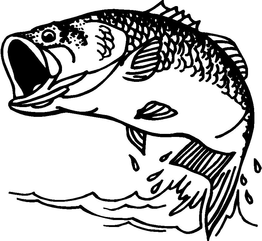 862x792 Bass Fish Coloring Pages