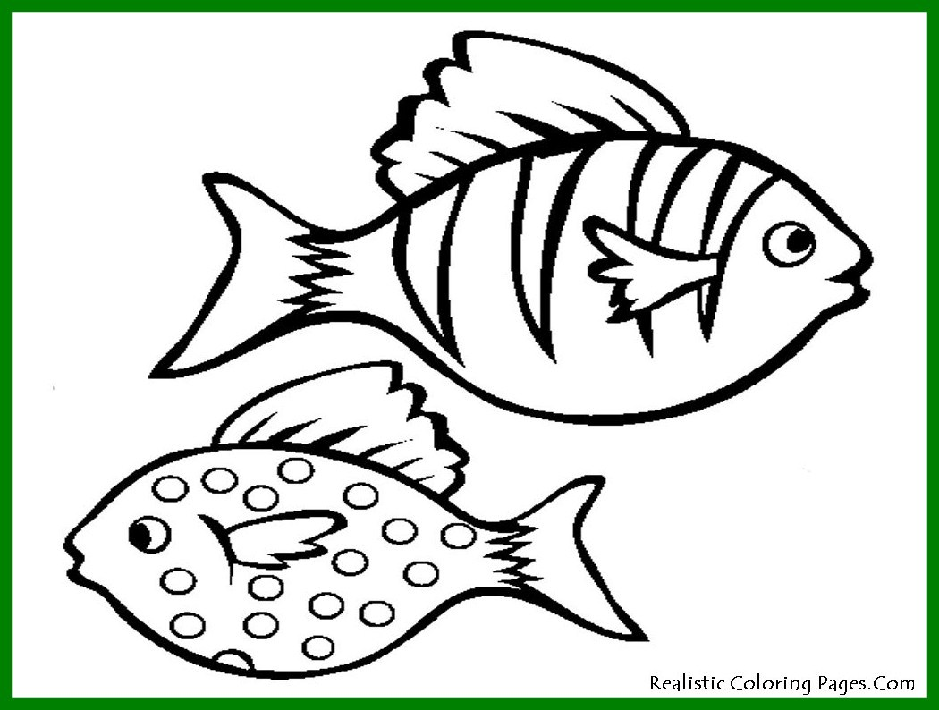 1050x794 Stunning Page Fish Bass Coloring Printable Seahorse Of To Print