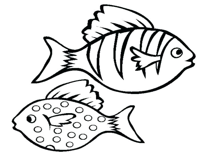728x546 Bass Coloring Pages Bass Fish Coloring Pages Bass Fish Coloring