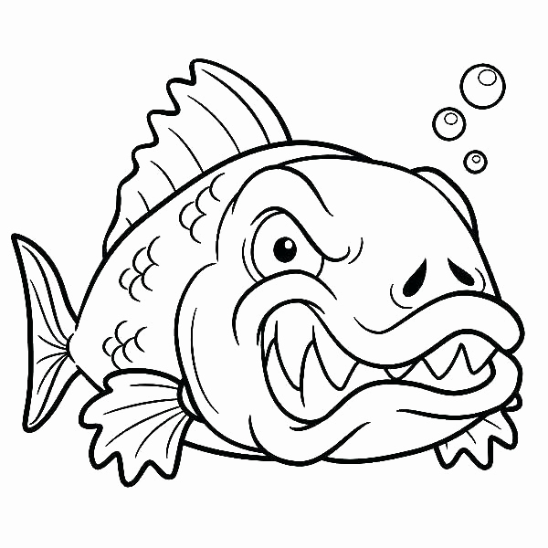 600x600 Fishing Coloring Pages Printable Bass Fish Coloring Pages Adult