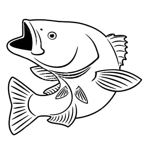 600x632 Sniper Bass Fish Coloring Pages Best Place To Color