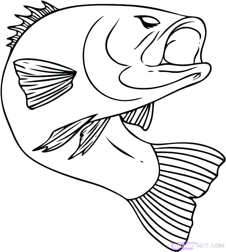 736x823 Tropical Fish Coloring Pages Realistic Fish Coloring Pages