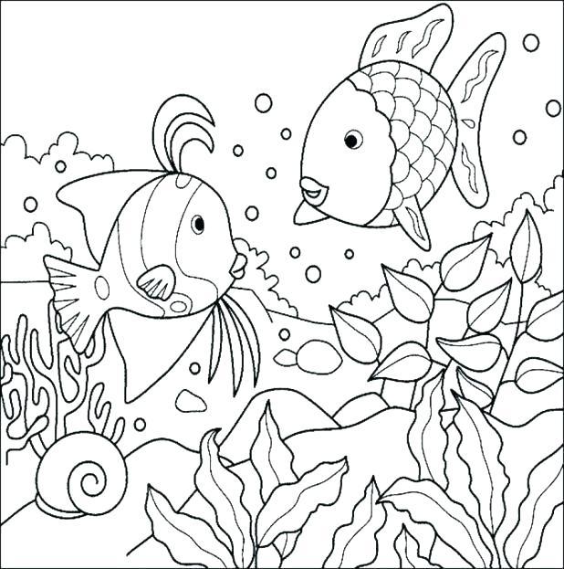618x623 Bass Fish Coloring Pages Yongtjun