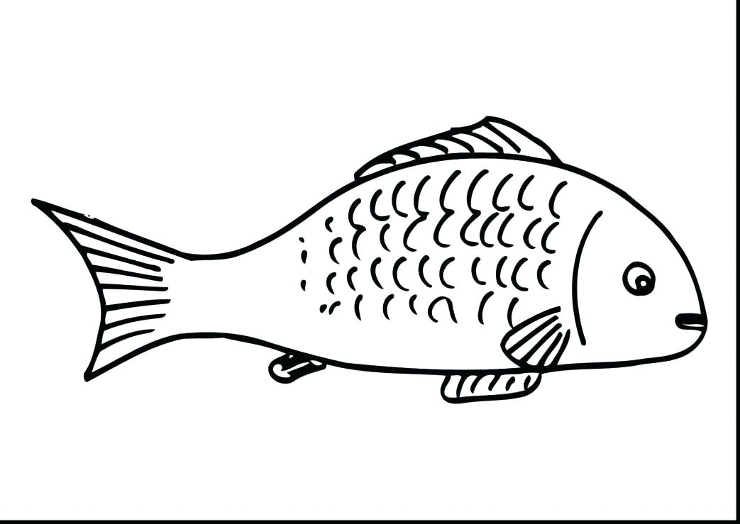 1043x739 Guitar Coloring Pages Bass Large Size Of Fishing Free Superb