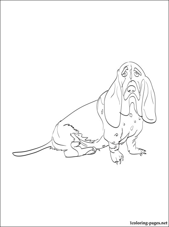 560x750 Basset Hound Coloring Page Coloring Pages