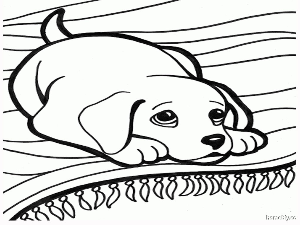 1024x768 Fresh Basset Hound Coloring Pages Leversetdujourfo Free Coloring
