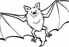 220x150 Bat Coloring Pages