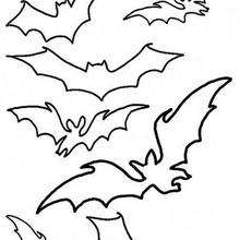 Bat Coloring Pages Free
