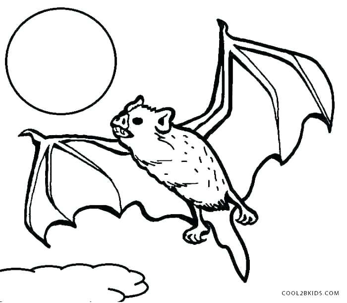 700x610 Bat Coloring Pages