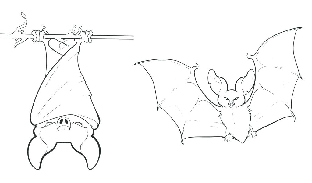1024x600 Halloween Bats Coloring Pages Deepart