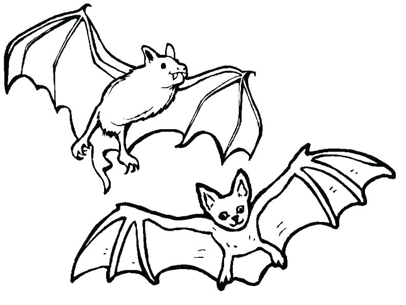 792x595 Bat Coloring Page Free Coloring Pages Bats Coloring Pages Bats