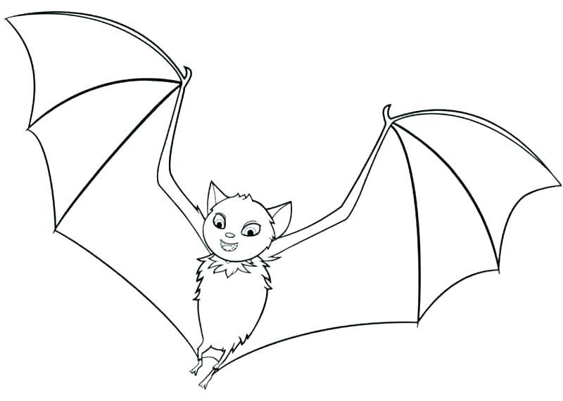 800x571 Bat Coloring Pages X Bat Coloring Page Printable Free