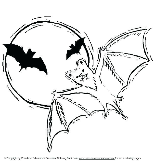 628x660 Bats Coloring Pages Free Printable Vampire Bat Coloring Bats