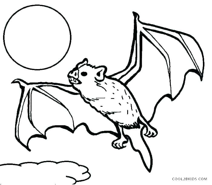 700x610 Coloring Pages Of Bats Coloring Pages Bats Rouge The Bat Coloring