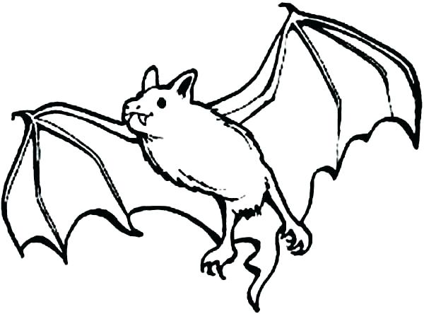 600x444 Bat Coloring Pages Bat Coloring Bat Coloring Pages Together