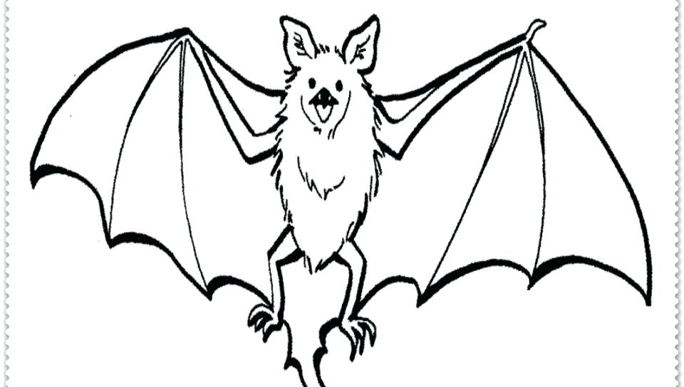 960x544 Free Printable Bat Coloring Pages Realistic Bat Coloring Pages