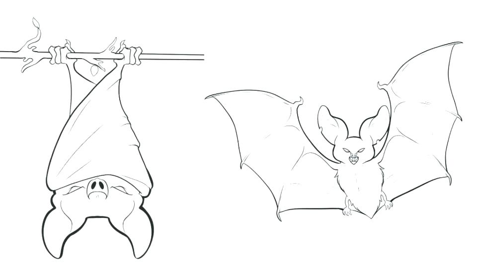 960x562 Vampire Bat Coloring Page Coloring Pages Bat Bat Coloring Pages