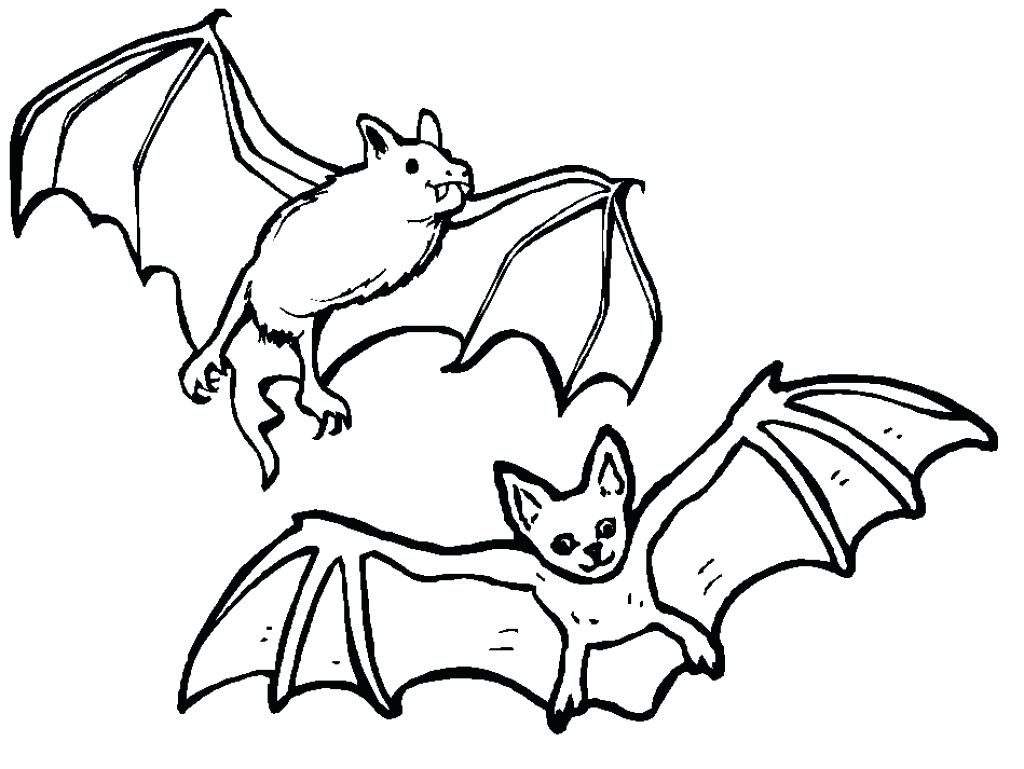 1024x769 Coloring Pages Bat Coloring Page Free Printable Pages For Kids