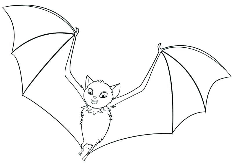 800x571 Bat Coloring Page Bat Coloring Pages Bats Coloring Pages Bat