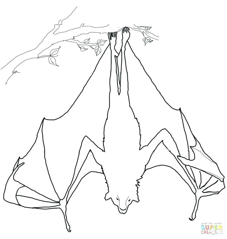 863x909 Exciting Coloring Page Of A Bat Coloring Pages Printable Coloring