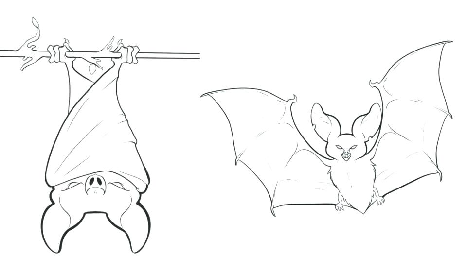 960x562 Coloring Pages Of Bats Coloring Pages Bats Bat Coloring Page Free