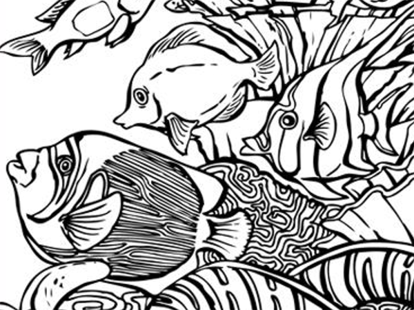 600x450 Coral Coloring Pages Free Printable Coral Coloring Pages Pata Sauti