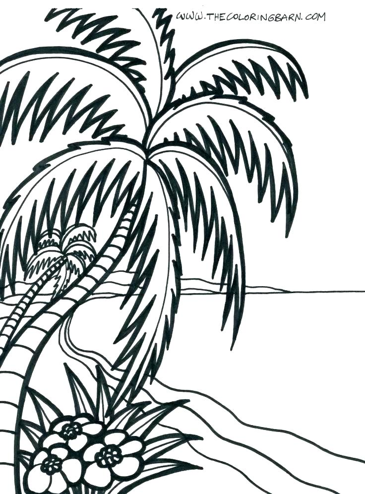 736x996 Coloring Page Beach Picture Of Umbrella Coloring Page Beach Chair