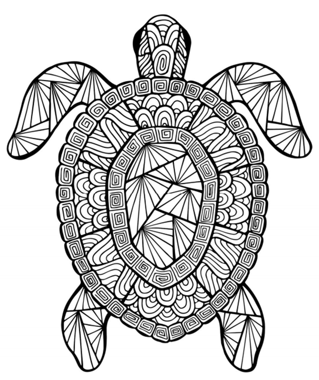 650x775 Free Printable Summer Coloring Pages For Kids Intricate Turtle