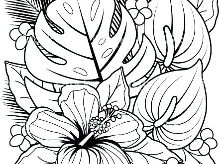 440x330 Coloring Pages Beach House Hawaiian Images Page Top For Toddler