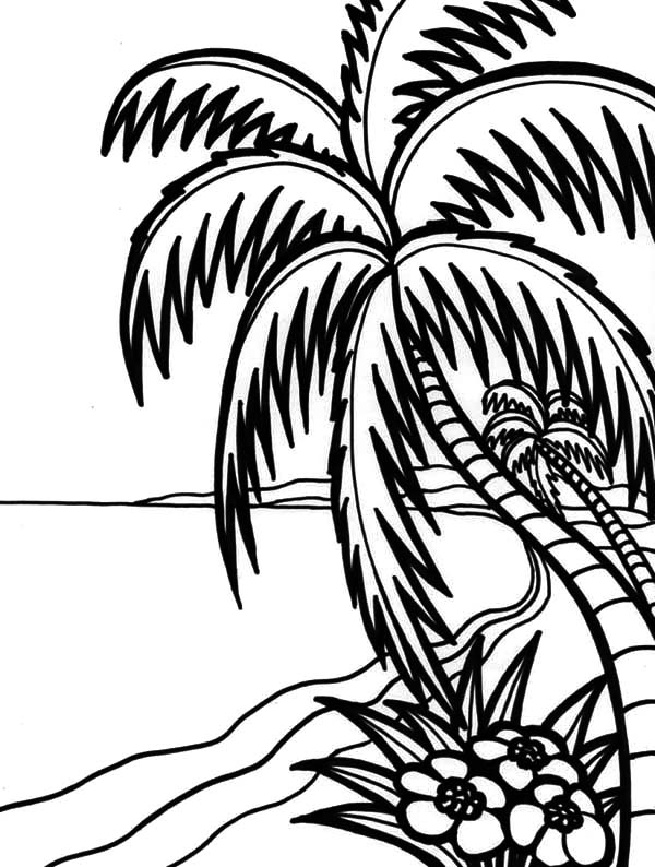 600x794 Hawaii Amazing Beach Coloring Pages Coloring Sun