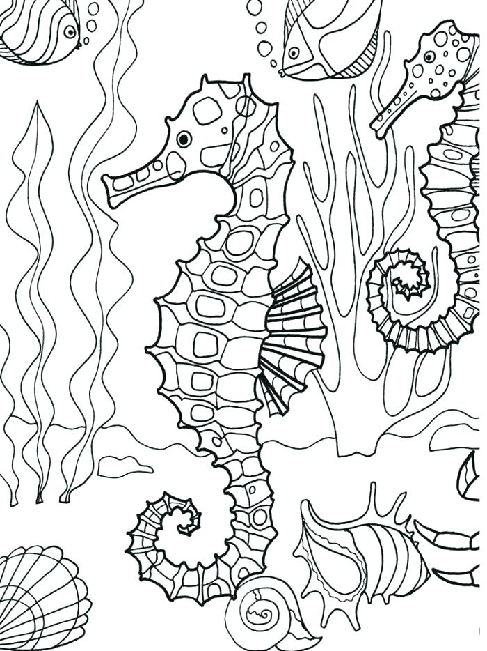 700x934 Coloring Pages Beach Scenes Ocean Scene Coloring Page Images