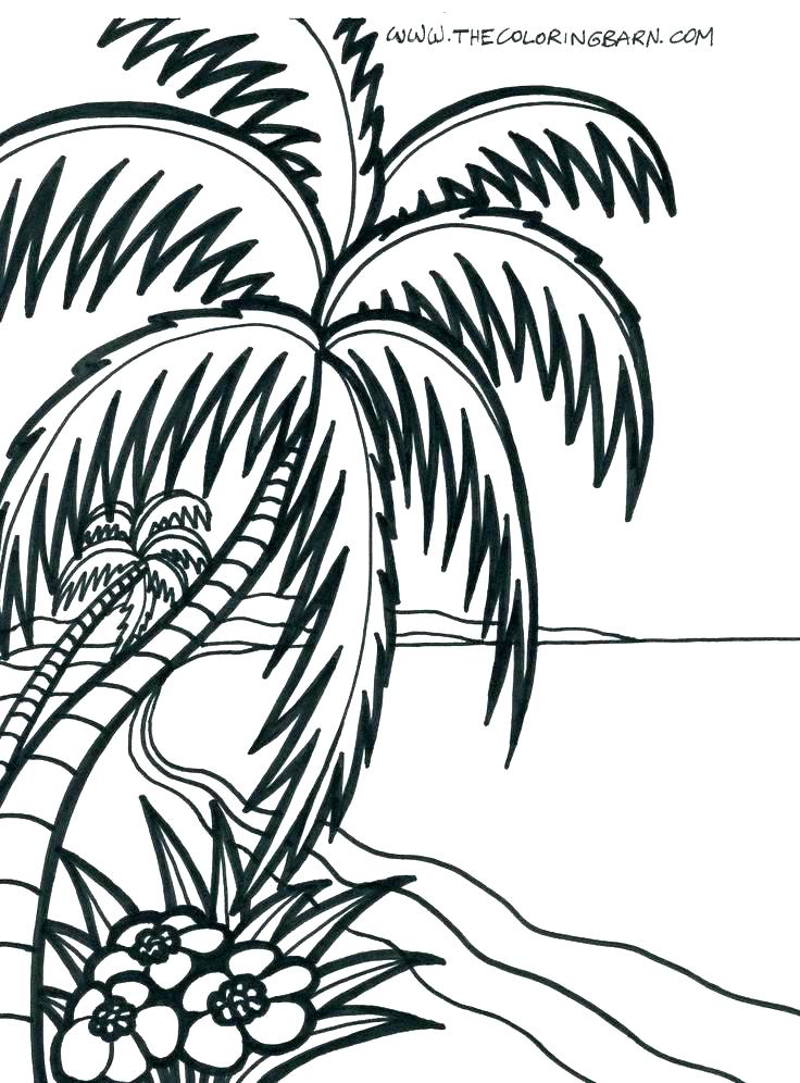 736x996 Coloring Pages Of Beach Toys Themed Best Page Pictures As Well