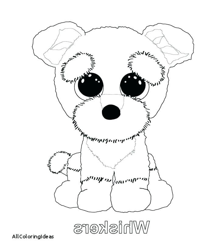 Beanie Baby Coloring Pages At Getdrawings Com Free For