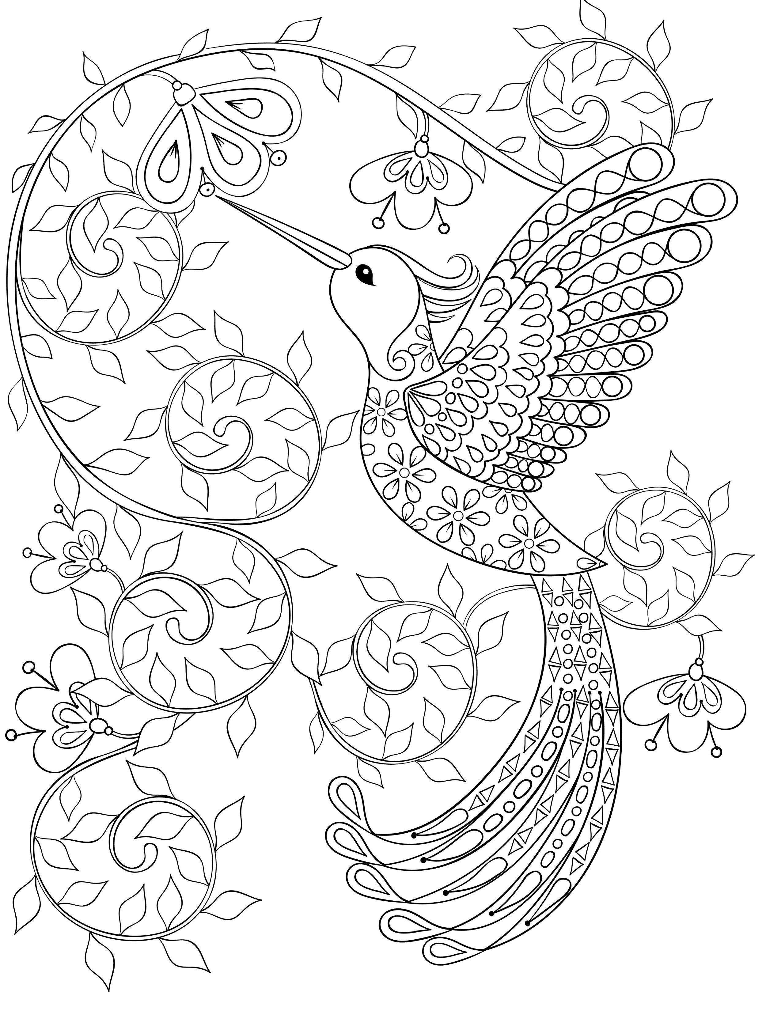 2500x3300 Hummingbird Coloring Pages For Adults, Free Dwonloadable Color