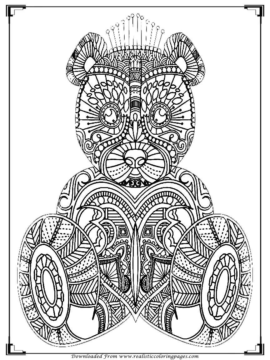 864x1152 Marvelous Bear Coloring Pages For Adult Printable Realistic