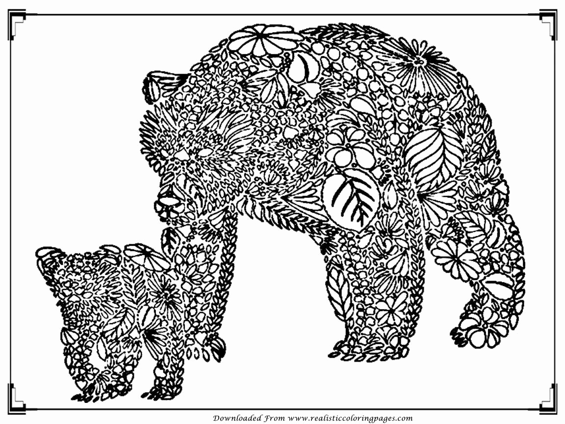 1152x864 Adult Coloring Free Pages Awesome Free Printable Bear Adult