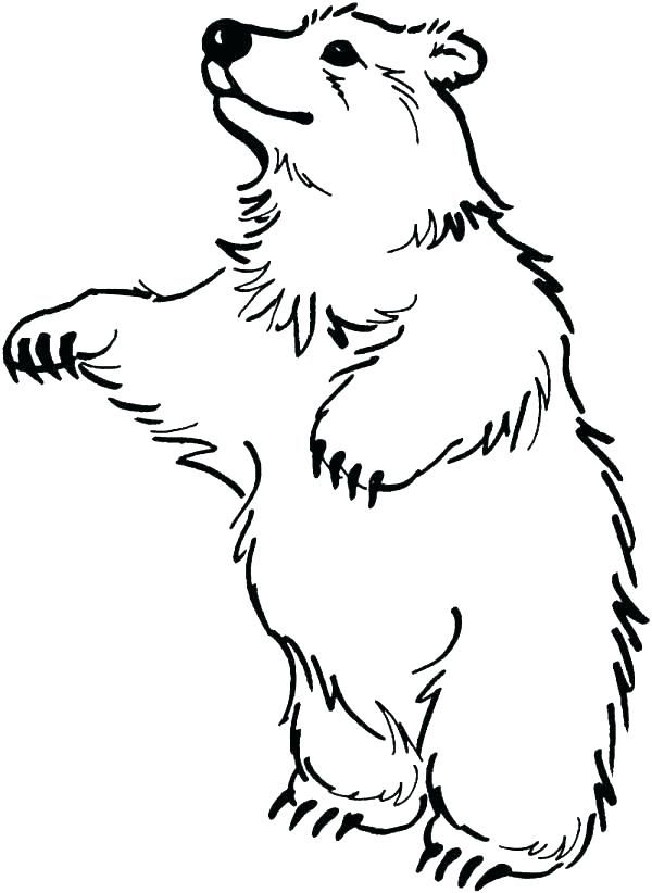 600x822 Black Bear Coloring Pages Simple Cute Cartoon Black Bear Coloring