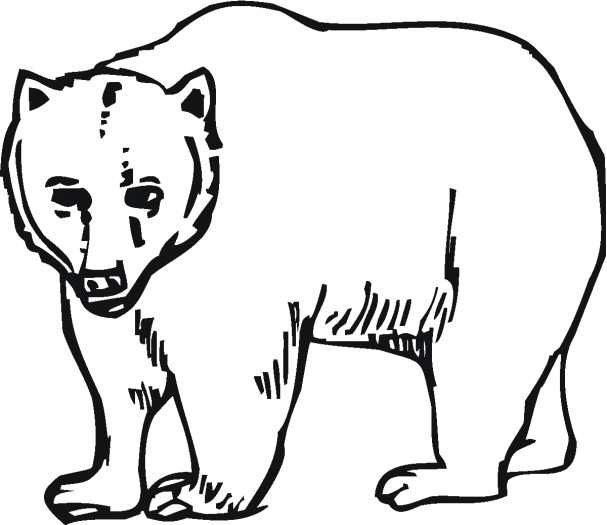 607x525 Bear Print Out Bear Coloring Pages Coloring Kids Cowboys