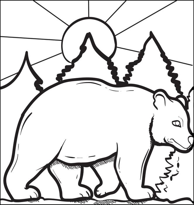 663x700 Free Printable Bear Coloring Pages Colouring To Beatiful Page