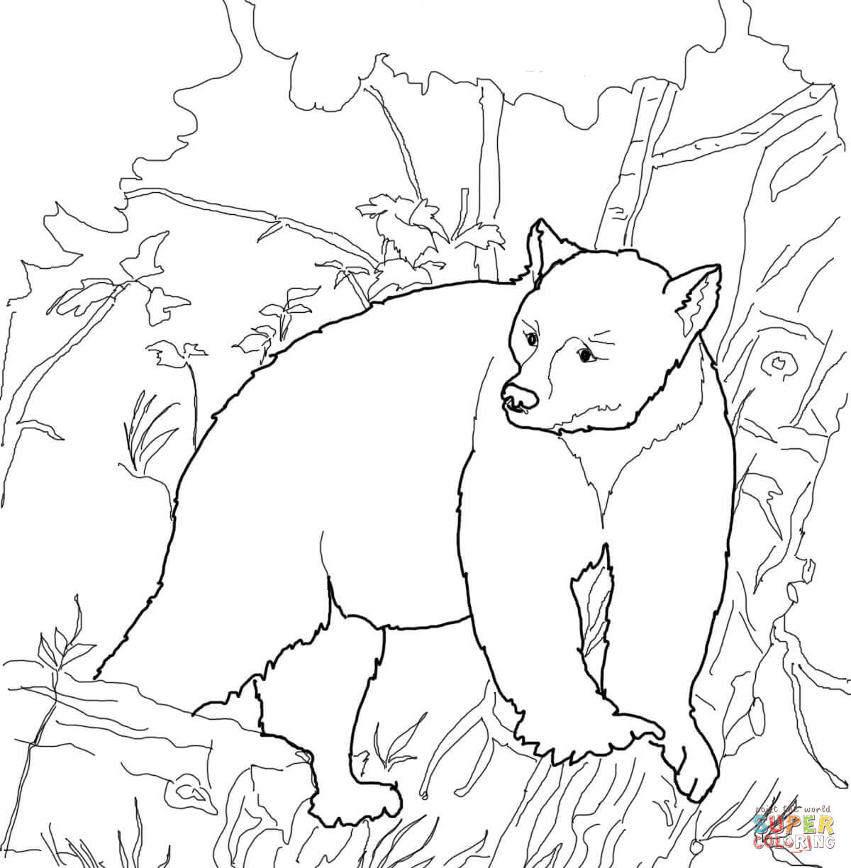 1200x1224 Surprise Colouring Pictures Of Bears Free Prin