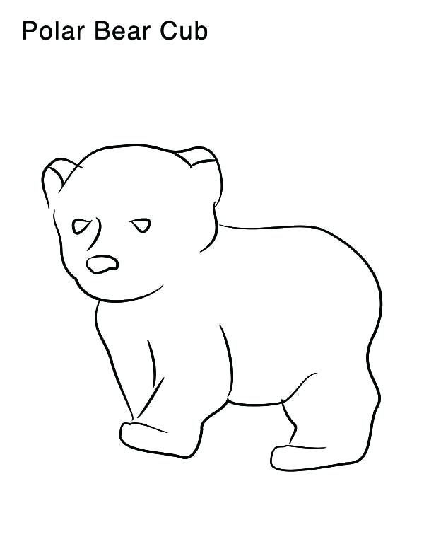 600x776 Coloring Pages Of Polar Bears Coloring Pages Draw A Polar Bear