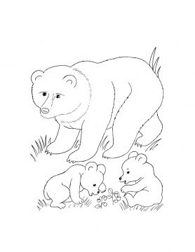 278x360 Cub Scout Coloring Pages Coloring Pages Bear Cub