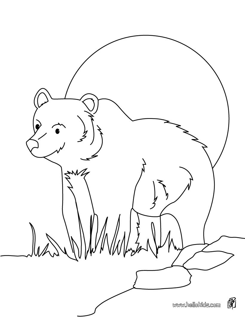 820x1060 Cute Brown Bear Cub Coloring Page Free Printable Pages Endearing